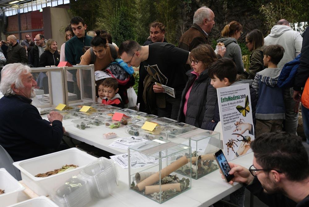 Gruppo Modenese Scienze Naturali